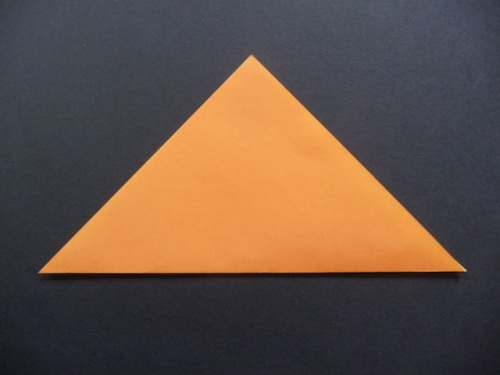 Valley fold paper in half diagonally.