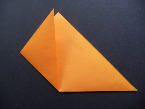 3. Valley fold one side to line up with the upper point of the triangle.